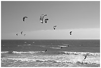 Group of kitesurfers, Waddell Creek Beach. California, USA (black and white)