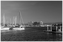 Yachts, marina, and hills, early morning. Marina Del Rey, Los Angeles, California, USA (black and white)