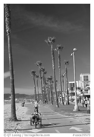 Woman riding a tricycle on the beach promenade. Venice, Los Angeles, California, USA (black and white)