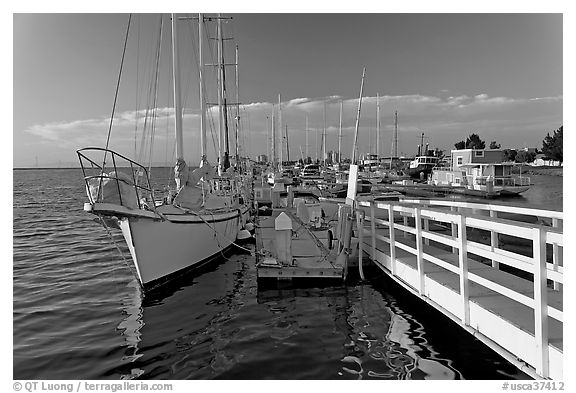 Yachts in Port of Redwood, late afternoon. Redwood City,  California, USA (black and white)
