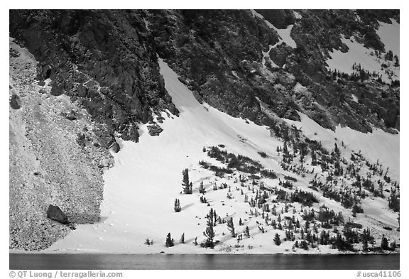 Sunlit Slope with snow, Ellery Lake. California, USA (black and white)