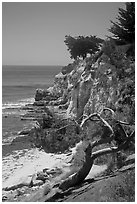 Coastal bluff. Santa Barbara, California, USA ( black and white)