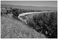 Hillside and waterfront. Santa Barbara, California, USA (black and white)