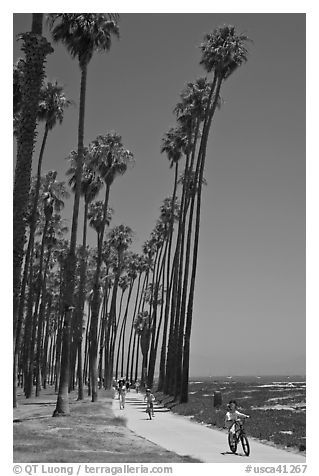 Families riding on beachside pathway. Santa Barbara, California, USA (black and white)