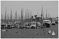 Santa Barbara Harbor. Santa Barbara, California, USA ( black and white)