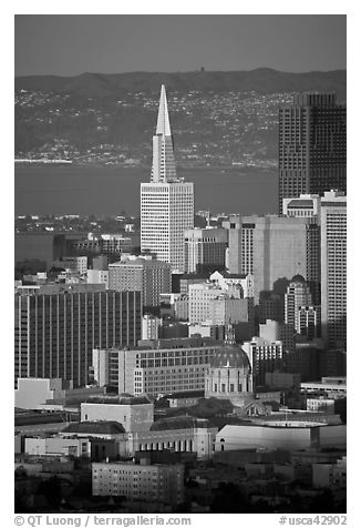 City Hall and Transamerica Pyramid, late afternoon. San Francisco, California, USA (black and white)
