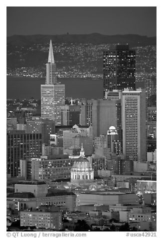 City Hall and Transamerica Pyramid at night. San Francisco, California, USA (black and white)