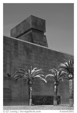 Hamon Tower and M H De Young memorial museum. San Francisco, California, USA (black and white)