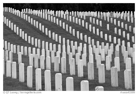 Graves, San Francisco National Cemetery, Presidio. San Francisco, California, USA (black and white)