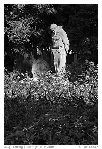Father Statue and flowers, Mission Dolores garden. San Francisco, California, USA (black and white)