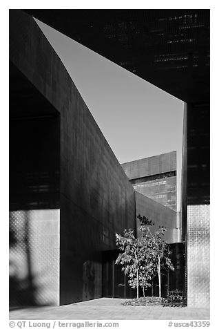 Opening, De Young Museum. San Francisco, California, USA (black and white)
