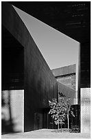 Opening, De Young Museum. San Francisco, California, USA ( black and white)