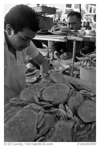 Man preparing crabs, Fishermans wharf. San Francisco, California, USA (black and white)