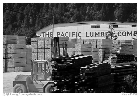 Lumber and forklift, Pacific Lumber Company, Scotia. California, USA (black and white)
