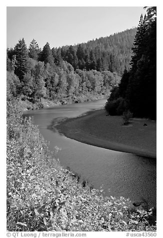 Eel River near Avenue of the Giants. California, USA