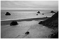 Shimmering ocean and river separated by sliver of sand, Jenner. Sonoma Coast, California, USA (black and white)