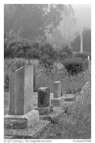 Foggy cemetery, Manchester. California, USA (black and white)