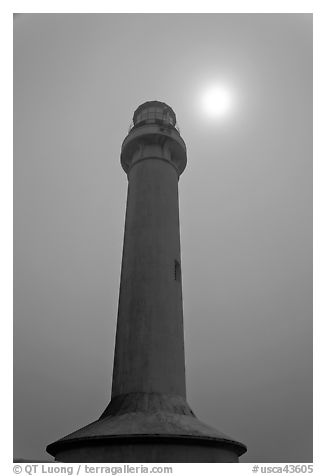 Point Arena Lighthouse and sun through fog. California, USA (black and white)