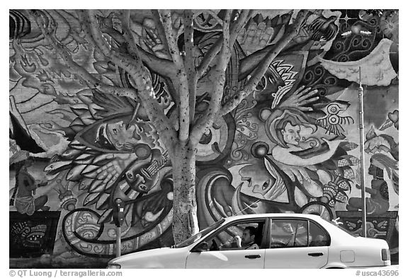 Man sitting in car, mural, and tree, Mission District. San Francisco, California, USA (black and white)
