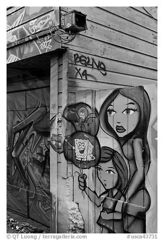 Painted fence, Mission District. San Francisco, California, USA (black and white)