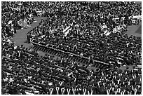 Large gathering of students in academic dress at graduation ceremony. Stanford University, California, USA ( black and white)