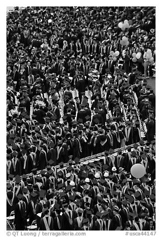 Dense rows of graduating college students in academic heraldy. Stanford University, California, USA (black and white)
