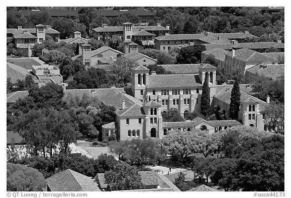 Campus seen from Hoover Tower. Stanford University, California, USA (black and white)
