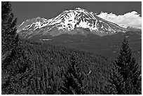 Forested slopes and Mount Shasta. California, USA ( black and white)