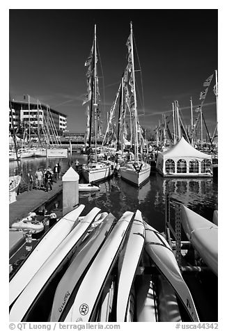 Kayaks and yachts, Jack London Square. Oakland, California, USA (black and white)