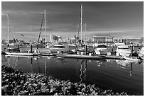 Alameda marina and Oakland skyline. Oakland, California, USA ( black and white)