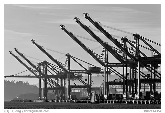 Giant cranes dwarf yacht Port of Oakland. Oakland, California, USA (black and white)
