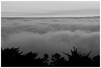 Sea of clouds at sunset. Oakland, California, USA (black and white)