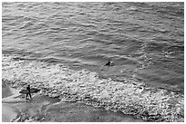 Surfers departing the beach towards the break. Half Moon Bay, California, USA (black and white)