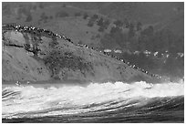 Bluff with spectators as seen from the ocean. Half Moon Bay, California, USA (black and white)