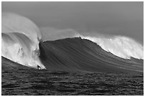 Surfing big wave at the Mavericks. Half Moon Bay, California, USA (black and white)