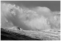 Surfer in Mavericks break. Half Moon Bay, California, USA (black and white)