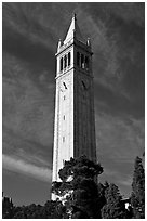 Campanile Tower, University of California at Berkeley. Berkeley, California, USA ( black and white)