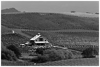 Red barn and wine country landscape from above. Napa Valley, California, USA (black and white)