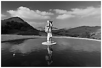 Pool, sculpture, and hills, Artesa Winery. Napa Valley, California, USA (black and white)
