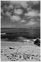 People sunning themselves on beach. Pacific Grove, California, USA ( black and white)
