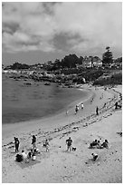 Beach, Lovers Point Park. Pacific Grove, California, USA ( black and white)