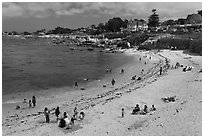 Picnic, Lover s Point Beach. Pacific Grove, California, USA ( black and white)