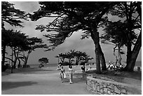 Lovers Point Park. Pacific Grove, California, USA ( black and white)