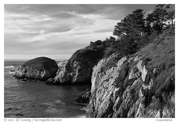 Bluff, China Cove. Point Lobos State Preserve, California, USA (black and white)