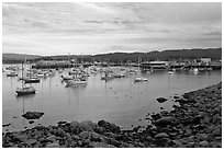 Harbor and Fishermans Wharf, late afternoon. Monterey, California, USA ( black and white)