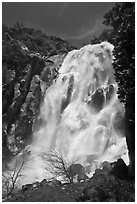 Grizzly Fall, Sequoia National Forest, Giant Sequoia National Monument near Kings Canyon National Park. California, USA ( black and white)
