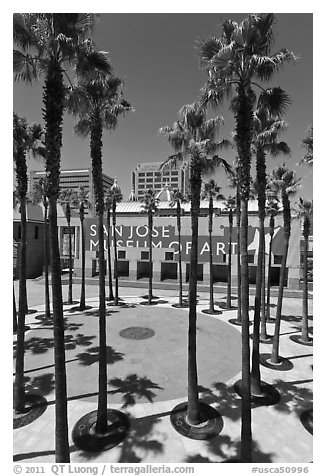 San Jose Museum of Art and palm trees. San Jose, California, USA (black and white)