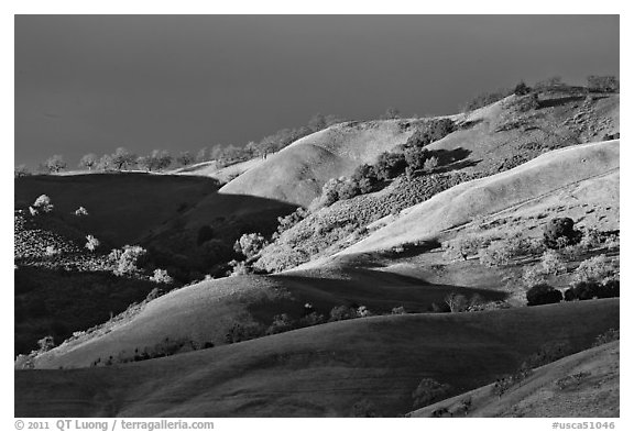 Hills at sunset, Evergreen. San Jose, California, USA (black and white)