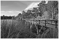 Pier and lake,  Vasona Lake County Park, Los Gatos. California, USA (black and white)