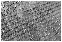 Panel of silicon chips, Intel Museum. Santa Clara,  California, USA ( black and white)